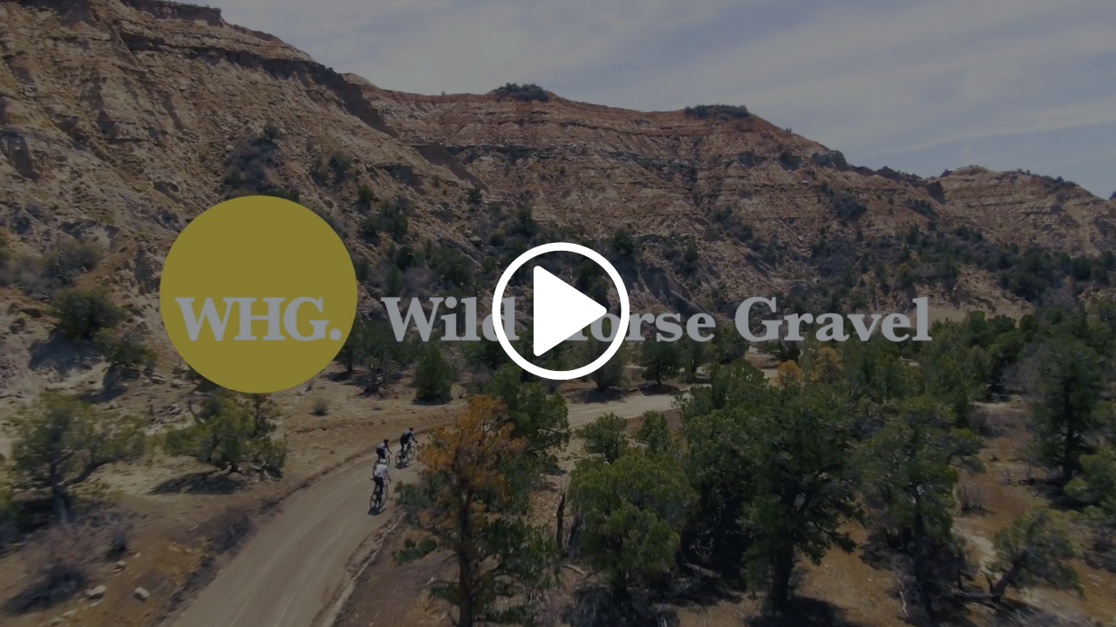 WHG_video